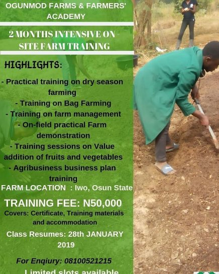 Ogunmod Farms Presents 2 months Intensive On-site Farm Training.