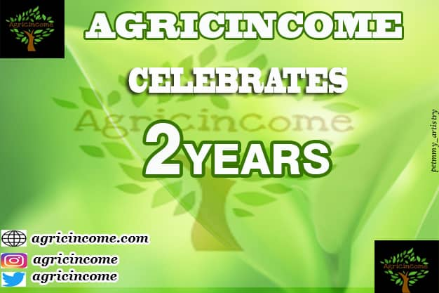Agricincome Hub at Two