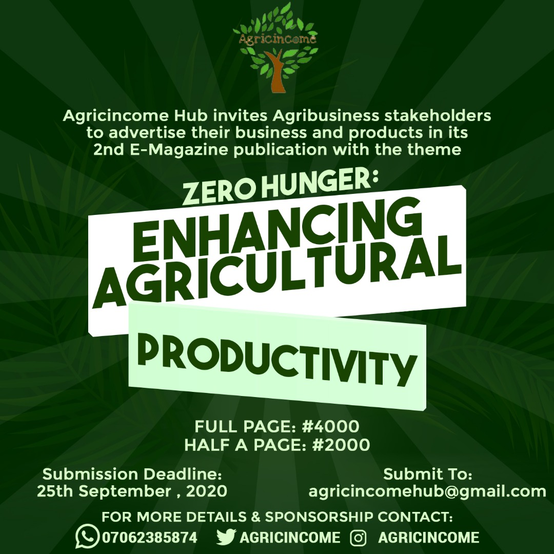 Agricincome Hub E-Magazine Call for Advert