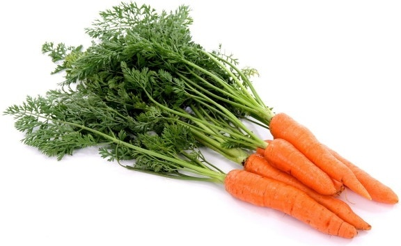Carrot Farming in Nigeria: Beginner's Guide